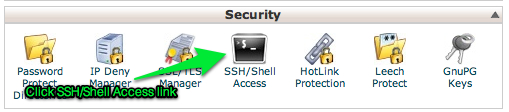 SSL pane in cPanel